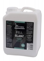 Werthness Fell Glanz 2500 ml Kanister